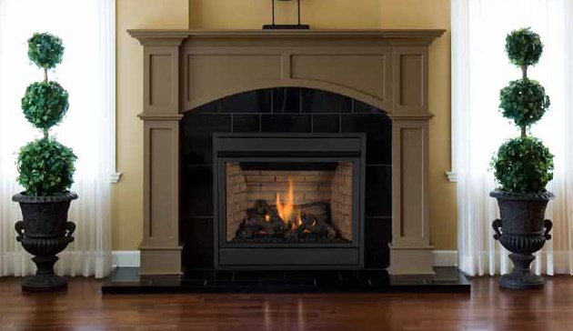 Shop for Gas Fireplaces at Setzer's and Co Inc.